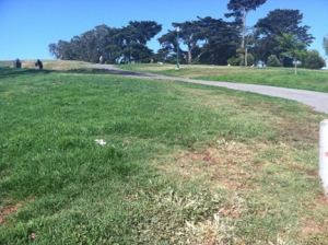 park-dry